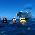 和歌山の内海&外海で楽しむ2ボートダイビング¥14,000