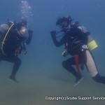 和歌山の海で弾け気味の体験ダイビング♪