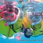 気軽に海で遊ぼう!シュノーケリング・体験ダイビングプラン!