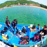 和歌山の海で最もストレスフリーの2ボートダイビング(内海)¥14,000