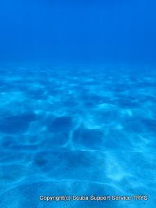 wakayama dive boat sukin