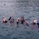 和歌山の海で中性浮力マスターしました!